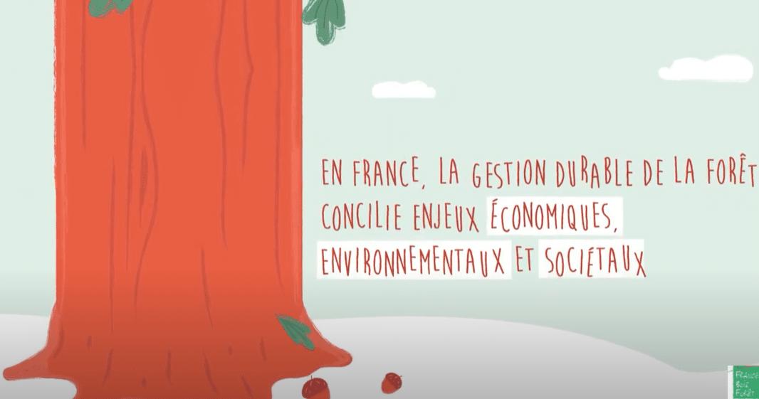 exploitation forestière france