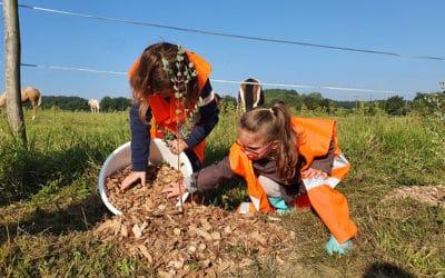 Partenariat avec Loïc LERAY, apiculteur de la région.